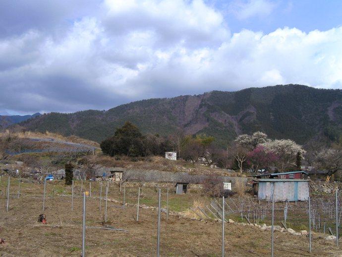 Nakagawa auf dem Feld